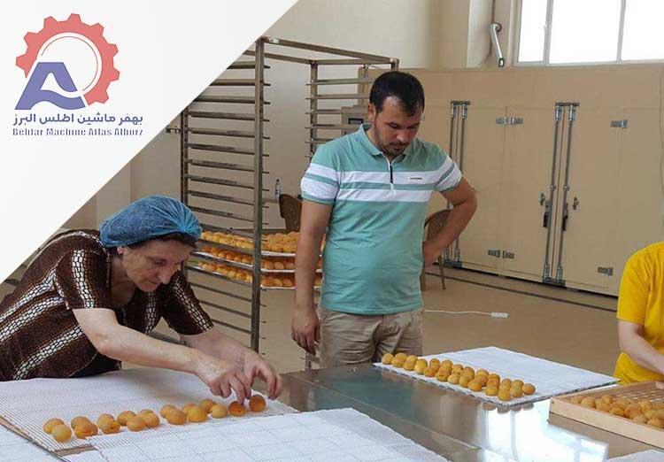 راه اندازی کارگاه میوه خشک کنی صنعتی-خط کراگاه میوه خشک کن صنعتی