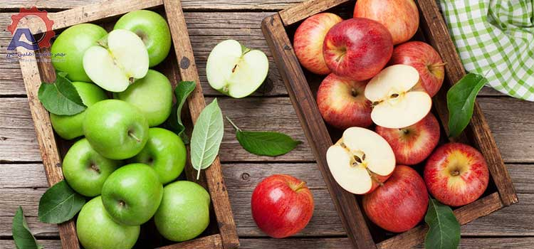 عکس 1 مقاله دستگاه شستشو سیب