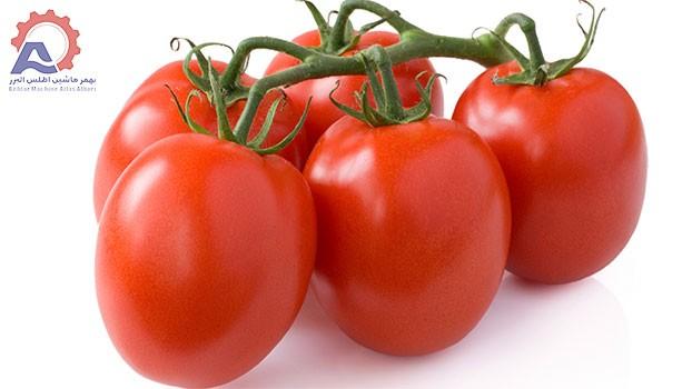 عکس 1 مقاله دستگاه شستشو گوجه